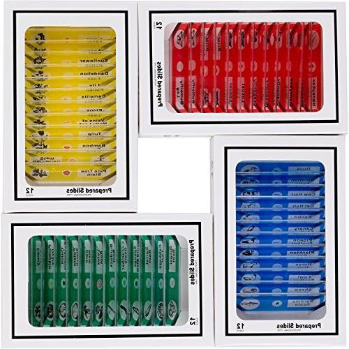 AMSCOPE-KIDS 48pcs Kids Plastic Prepared Microscope Slides o