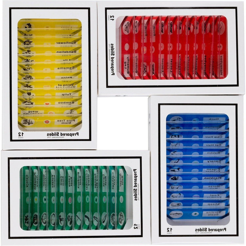 kids 48pcplastic prepared microscope slides